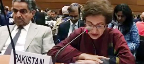 Tehmina Pakistan United Nations UN high commissioner for human rights Michelle Bachelet