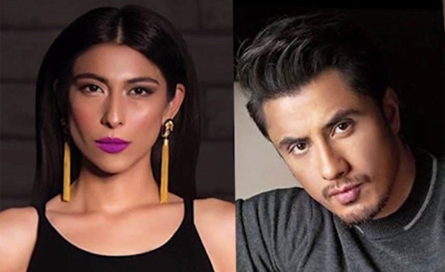 Meesha Shafi ALi Zafar defamation suit damages reputation
