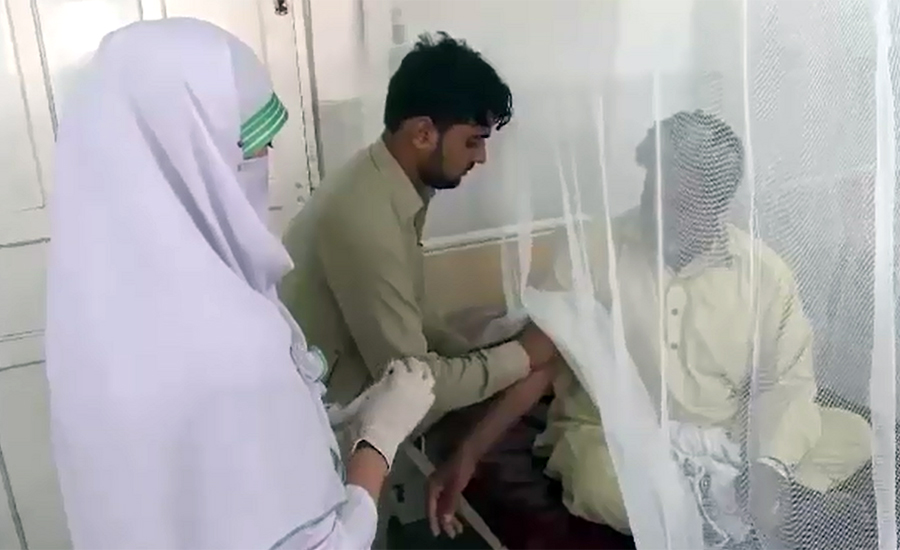 18 more patients test positive for dengue in Swat