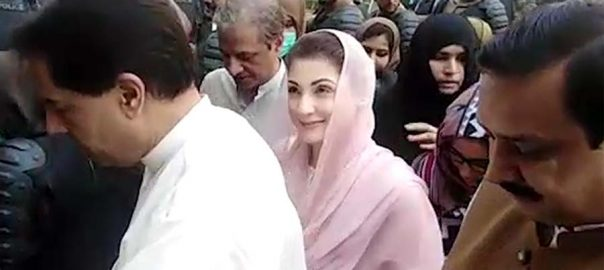 Maryam Maryam Nawaz PML-N Pakistan Muslim League-N LHC Lahore High Court money laundering money laundering case bail plea