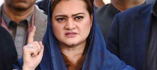 Marriyum Marriyum Aurangzeb departure Nawaz Sharif illegal unconstituional PML-NGovt, responsible, Nawaz, life, harmed, delaying, tactics, Maryam