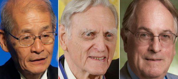 Nobel Prize Chemistry 2019 Chemistry Laureates