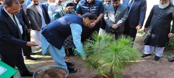 PM Pm imran khan freedon kashmir tree Kashmir Freedom Tree peace prospeirty