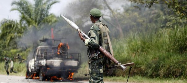 Rwanda, 19, assailants, deadly, national park, attack