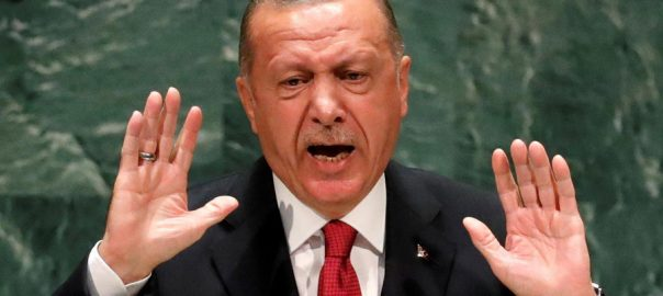Syrian, rebels, vow, back, Turkish, operation, northeast