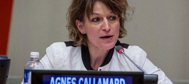 Indian atrocities IoK Indian Occupied Kashmir Agnes Callamard