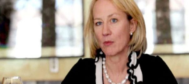 human rights US ALice Wells ALice G Wells restore services Indian occupied Kashmir Curfew