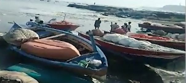 Emergency, hospitals, coastal, areas, cyclone, 'Kyarr', moves, further