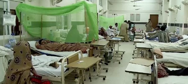 dengue surfaced Punjab Sindh hospitalsdengue Dengue fever patient case cases Pakistan Punjab Khyber pakhtunkhwa