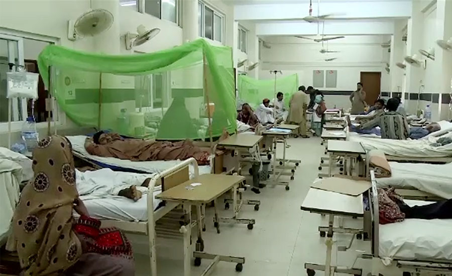 dengue Dengue fever patient case cases Pakistan Punjab Khyber pakhtunkhwa