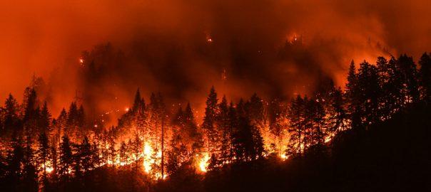 wildfires california statewide emergency wildfirres evacuations