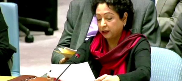 Pakistan Muslim Ummah Maleeha Lodhi UNSC United Nations United Nations Security Council