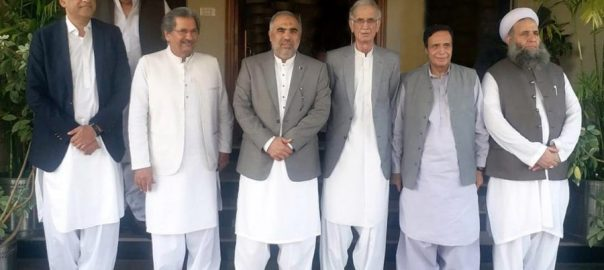 Govt, allows, JUI-F, Azadi March, ambit, court verdicts, constitution