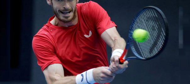 Andy Murray , solid , performances , comeback , hip surgery, , Pablo Cuevas , storm , quarter-finals , European Open , Antwerp.