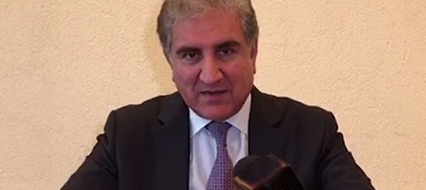 Humanitarian Humanitarian crisis Occupied Kashmir FM FM Qureshi Foreign minister IoK Indian Occupied Kashmir