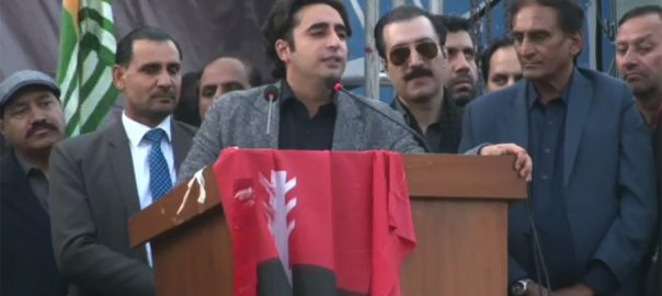 Bilawal Bhutto, 'selected', umpire, acceptable