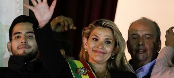 Bolivian Bolivian Senate interim presidency Morales loyalist