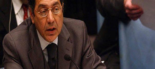Munir Akram peaceful relations neighboring neighboring countries Pakistani envoy Pakistani ambassador
