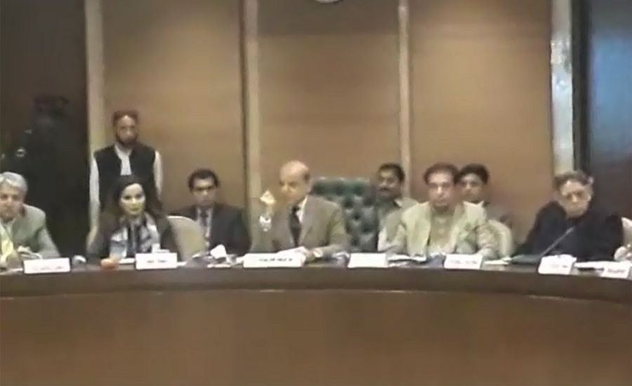 Public Accounts Committee, chairman, elected, Nov 28