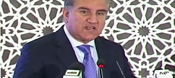 FM Qureshi, national, security, economy