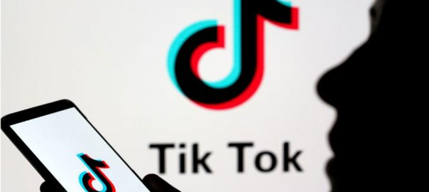 TikTok TikTok security Army data warning Schumers
