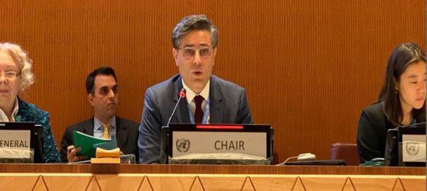 UN Convention CCW Un Khalil Hashmi FO foreign Office