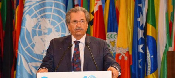 UNESCO shafqat mehmood minister for education unilateral illegal Kashmir's autonomy revocation