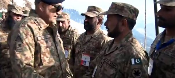 Quest, peace, misconstrued, weakness, COAS