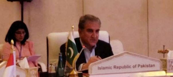 Islamophobia FM Foriegn Minister Shaha Mehmood Qureshi collective efforts FM Qureshi