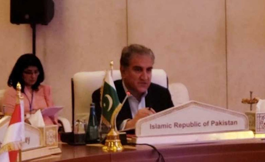 FM Qureshi says collective efforts needed to counter Islamophobia