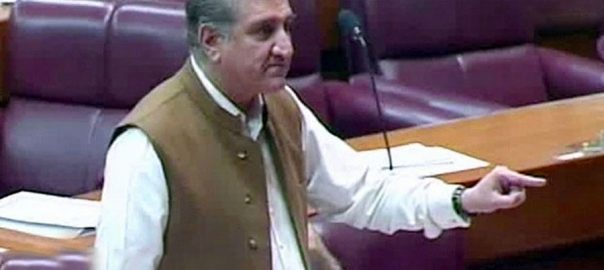 Kashmir issue FM Foreign Minister Shah Mehmood Qureshi nation united weakness