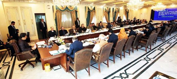federal cabinet 10-point agenda cabinet meeting privatisation committee