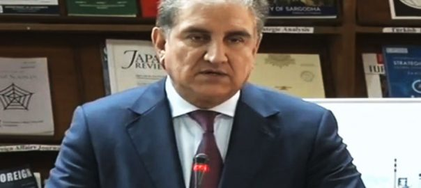 emergency meeting PTI's spokesperson army chief's extension FM Shah mehmood Qureshi Pm imrna khan Federal Cabinet