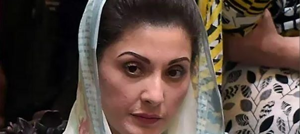 cabinet sub-committee ECL decision maryam nawaz PML-N vice president