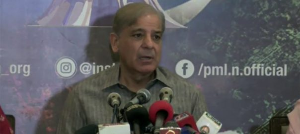 NAB, orders, freeze, properties, Shehbaz, Sharif