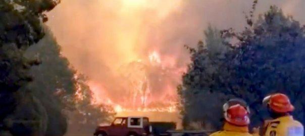Australia's, NSW, faces, catastrophic fire conditions, body found, South Australia