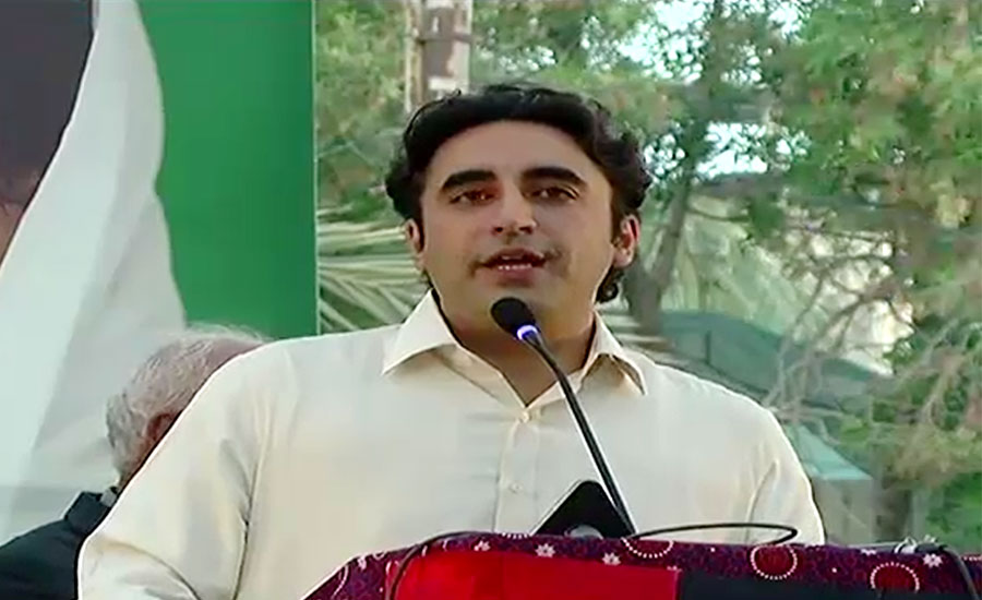 Bilawal Bhutto, 'selected, puppet', acceptable