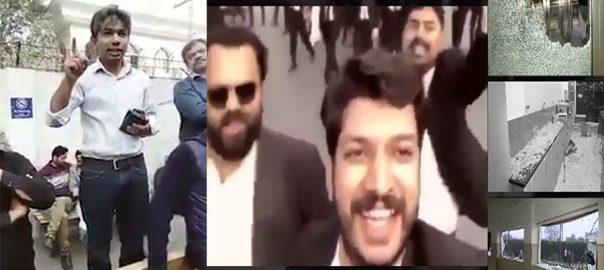 lawyers PIC 92 News why lawyers attack at PIC IGP doctor video