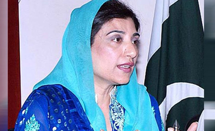 AC declares PPP's Farzana Raja as proclaimed offender in BISP reference