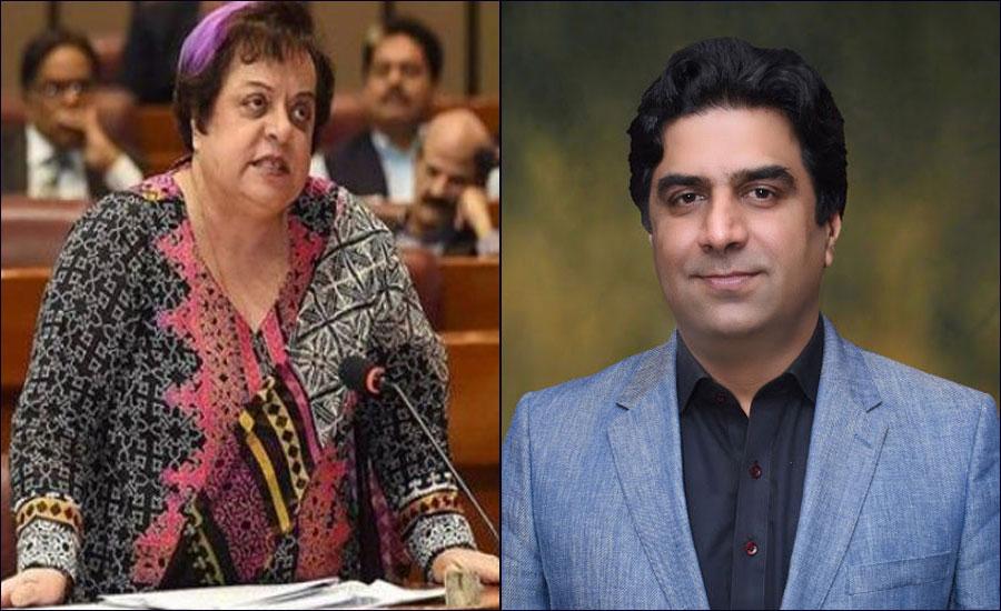 PTI's Ali Nawaz, Shireen Mazari exchange heated words over NA ruckus