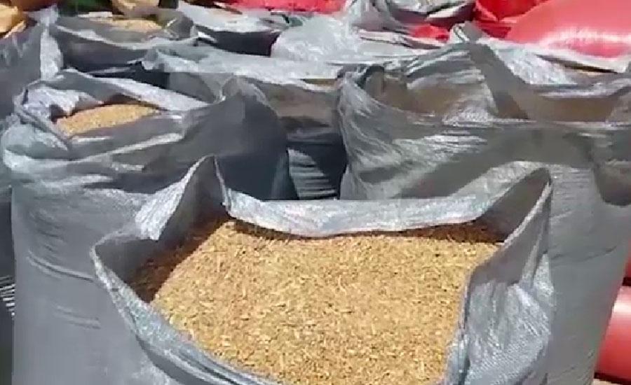 Punjab needs 1 million tons of wheat to control flour price