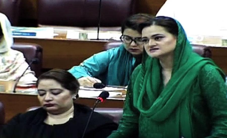 Marriyum Aurangzeb terms federal budget as 'Zakoota Jin's budget'