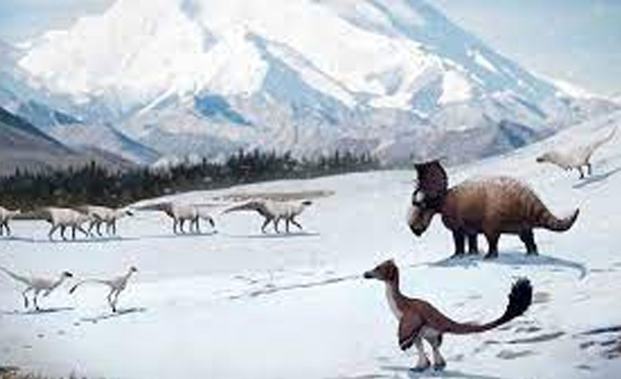 Study finds dinosaurs existed in ancient wintery Arctic
